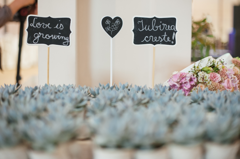 Fotografie de nunta mesaje cu creta