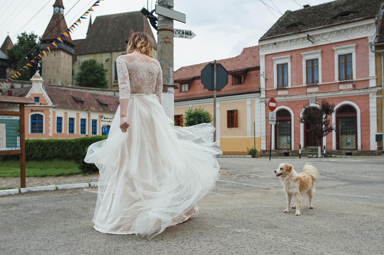 Fotograf profesionist de nunta, fotograf, fotograf de nunta, fotograf profesionist,,trash the dress, sedinta foto after wedding, miri trash the dress, mireasa la trash the dress cu un catelus care o admira