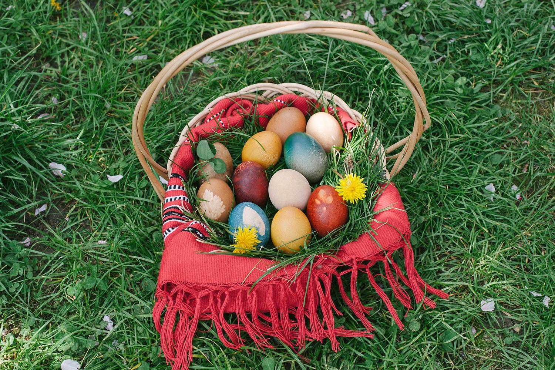 robert dumitru fotograf profesionist, cos cu oua de Paste, oua de Paste, oua de Paste in cos, fotograf, iarba verde, primavara, sesiune foto profesionista