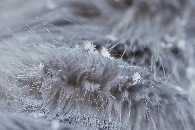 Detaliu haina de blana gri cu fulgi mici de zapada in ea la sedinta foto trash the dress